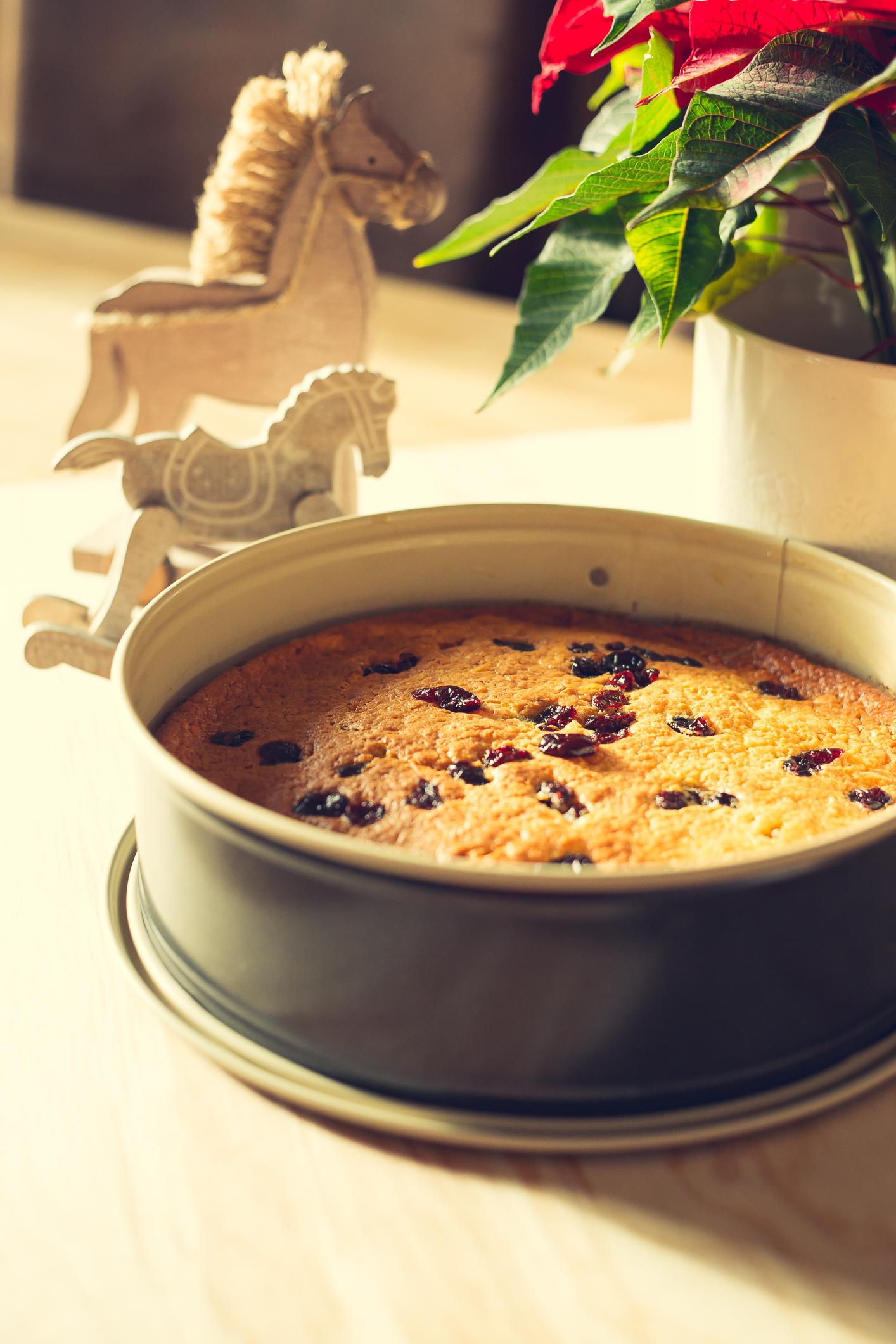 Schneller Apfelkuchen mit Cranbeeries aus dem Thermomix®